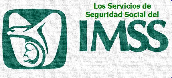 Los Sevicios De Seguridad Social Del IMSS