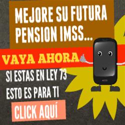 Videos Sobre Pensiones IMSS Ley 73
