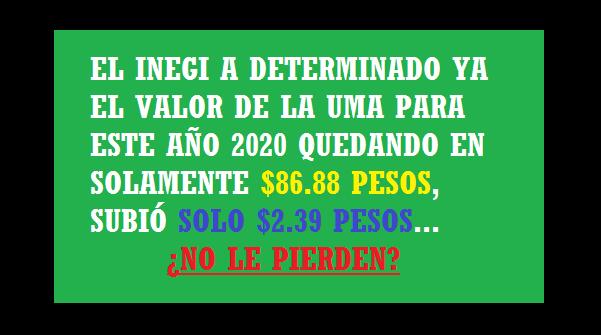 Nuevo Valor De La UMA Año 2020